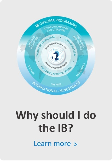 Why should I do the IB?